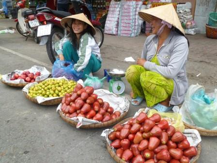 Vietnam fruit vendors