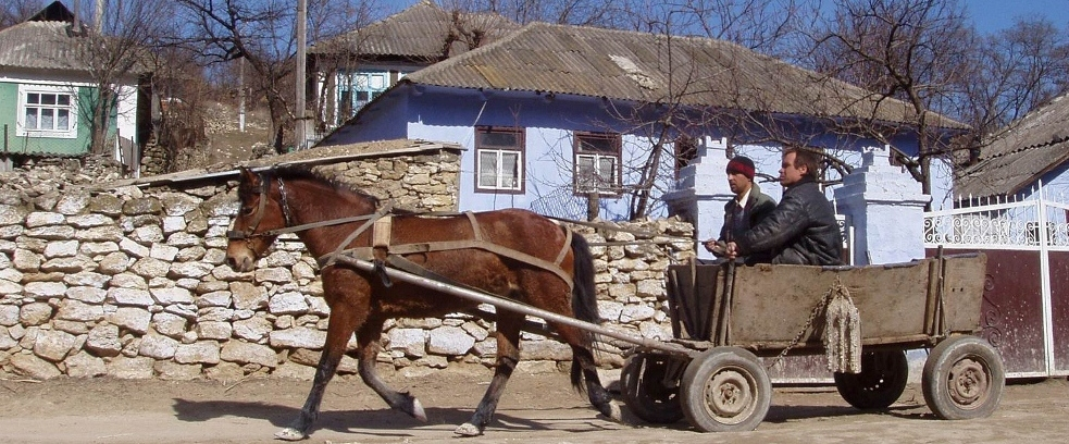 Moldova horse-cart in village
